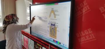 Pandemi süreci ve eğitimde dijital dönüşüm
