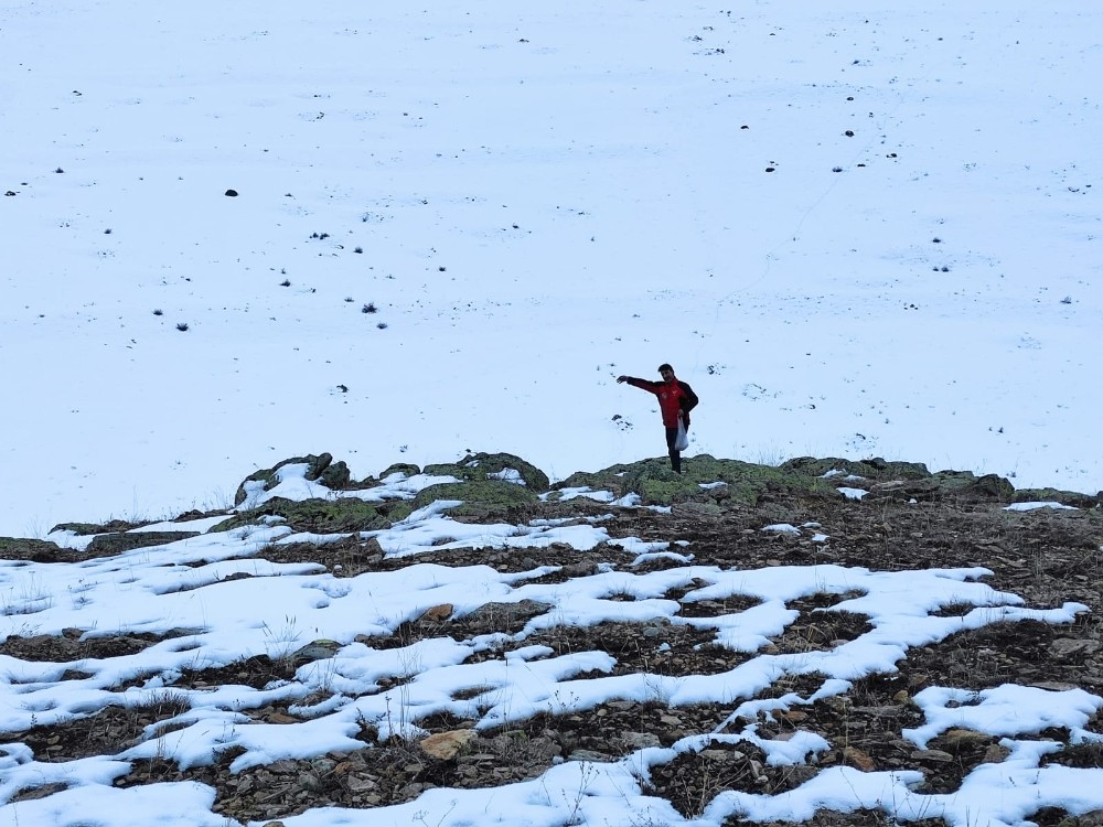 Karla kaplı dağlara yiyecek bıraktılar
