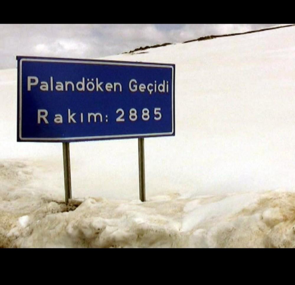 Kar ve tipi nedeniyle Tekman yolu ulaşıma kapandı
